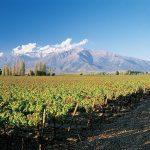 チリワインの生産地区の概要