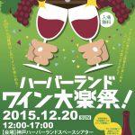 【神戸】ハーバーランドワイン大楽祭 2015年(12.20)